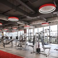 Cerchio II Acoustic Panels - Gym