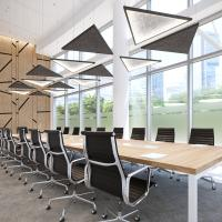 Acoustic Triangles and Micro Triangle SE Acoustics - Boardroom